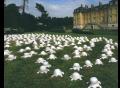 tortues-de-la-paix-jardins